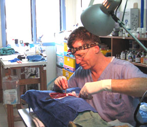 Barry Nicholls in surgery