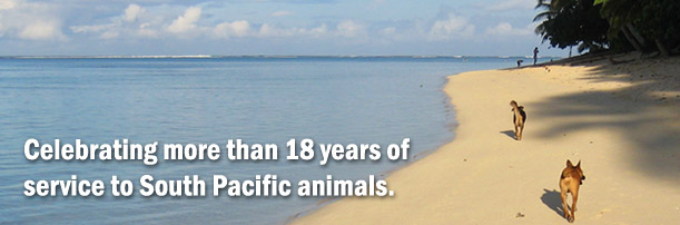 Celebrating more than 18 years of service to South Pacific animals