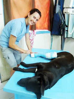 Senior Vet, the Esther Honey Foundation Animal Clinic