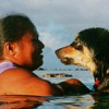 The right thing to do for your friend and for your island: Spay/Nueter